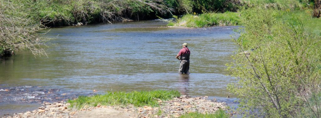 Trout Stocking 2017 // The New River